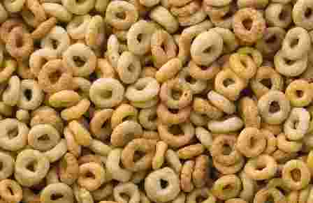 Do Wild Garden Birds Like Cheerio Cereal & Is It Good For Them?