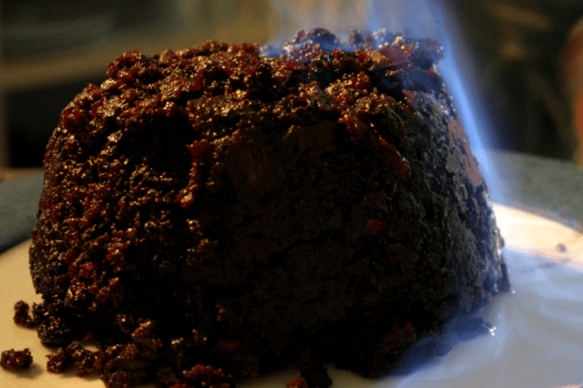 Do Budgies Like Xmas Pudding & Is It Good For Them?